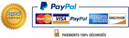 PayPal_Paiements_Sécurisés_Montage_Lock_Visa_LARGE