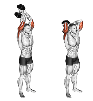 ​Extension triceps